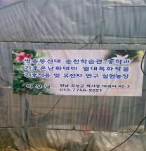 성남 카티모 커피체험농장_전라도 곡성
