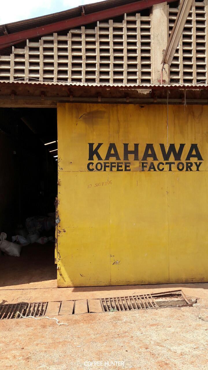 커피빈 겉껍질 벗기는 공장.jpg